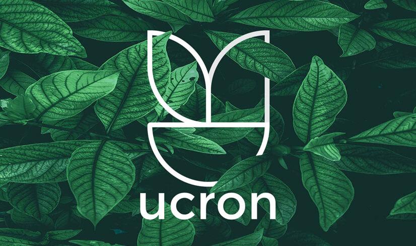 Thiết kế Logo lấy cảm hứng từ thiên nhiên